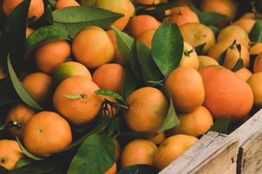 Mandarinen in der Kiste